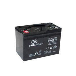 ProEnergy gel-accu 12 V